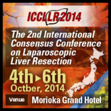 2nd International Consensus Conference on Laparoscopic Liver Resection