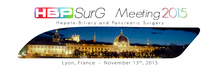 HBPSurG Meeting 2015