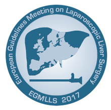First European Guidelines Meeting on Laparoscopic Liver Surgery