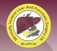 MI-LAPS, First Hands-on Major Cadaveric Laparoscopic Liver Resection Course
