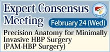 JSHBPS - Expert Consensus Meeting: Precision Anatomy for Minimally Invasive HBP Surgery (PAM-HBP Surgery Project)